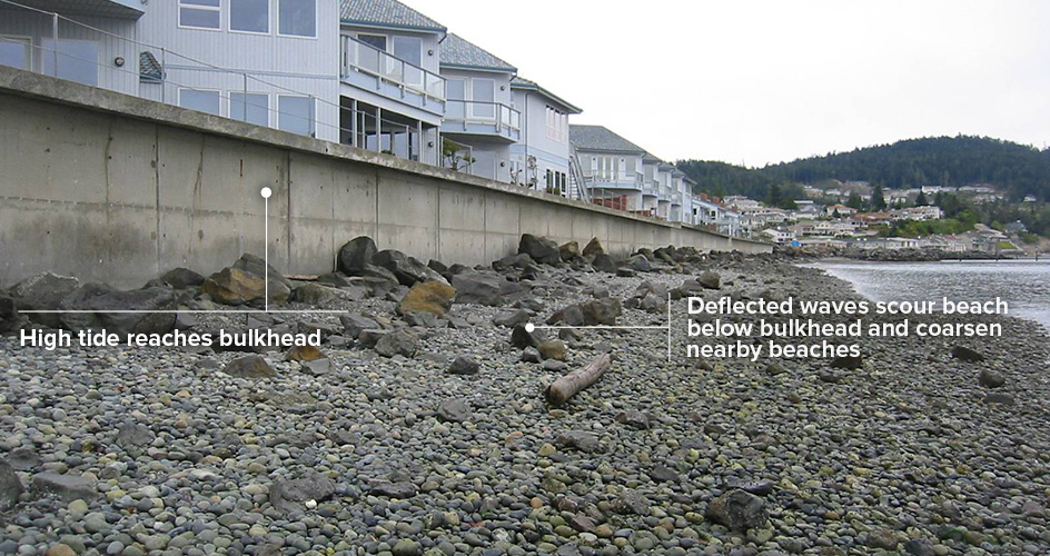 Bulkhead hard armor and the affect on beaches